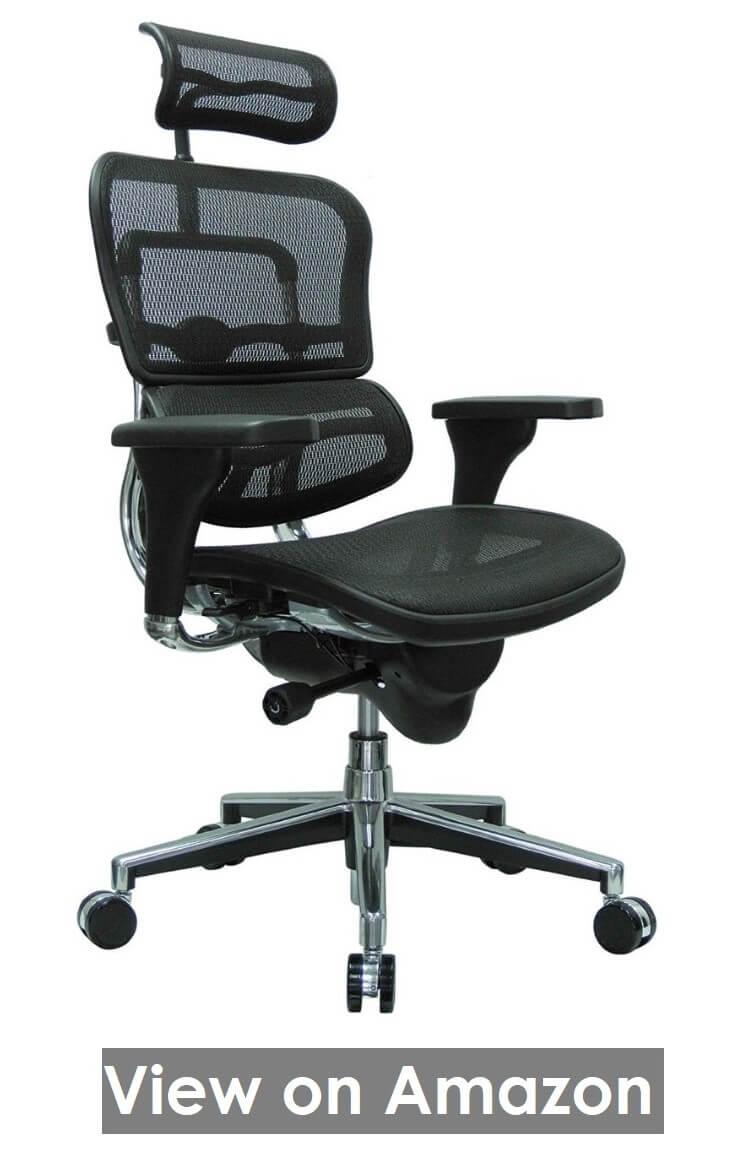 Raynor Ergohuman High Back Swivel Chair
